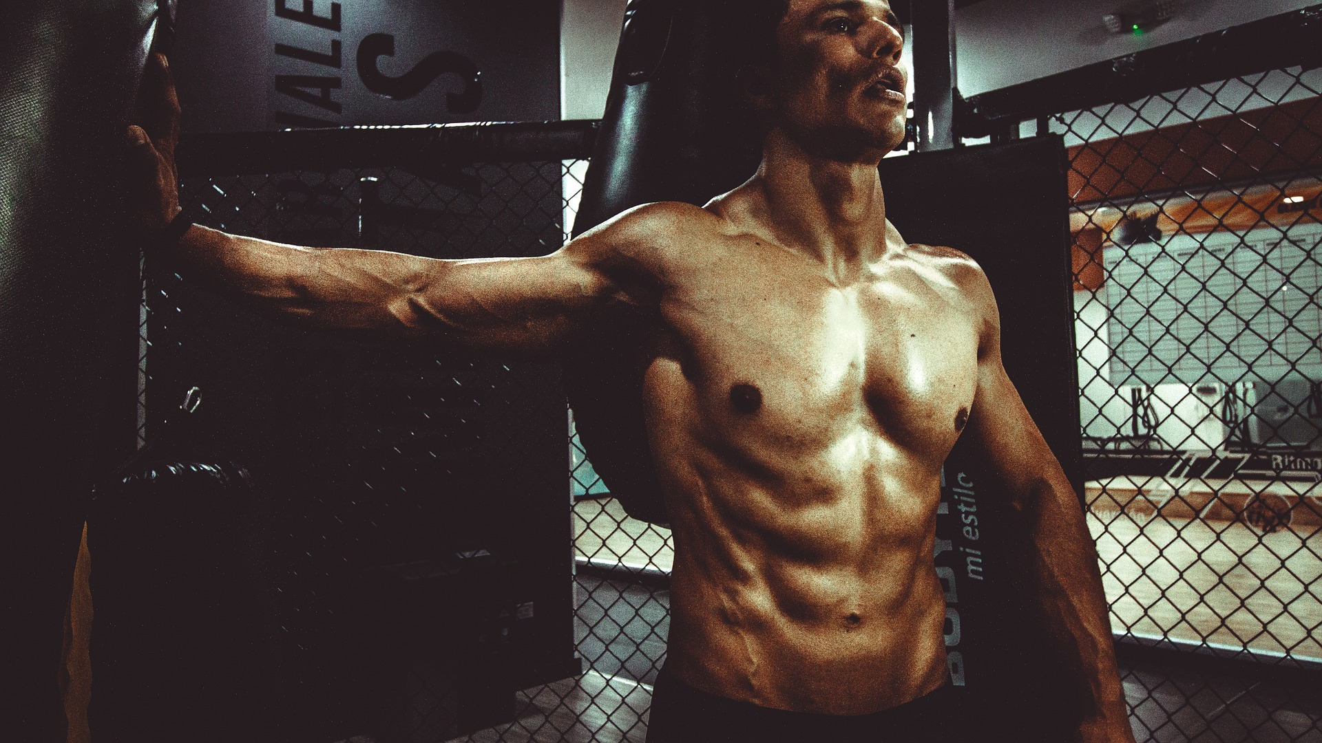 The 3 Principles to Building Lean Muscle – Earn the Body You Deserve